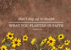Don't dig up in doubt what you planted in faith. | Elisabeth Elliot
