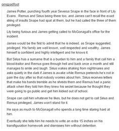 james potter - the marauders and mcgonagall
