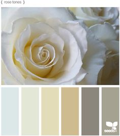 Possible master bedroom colors