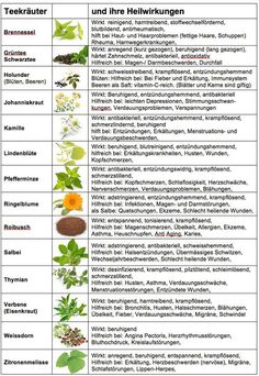 Medicinal herbs and their effects- Heilkräuter und ihre Wirkung Medicinal herbs and their effects - Healing Herbs, Medicinal Plants, Natural Healing, Little Gardens, Superfood, Good To Know, Health And Beauty, Natural Remedies, Herbalism