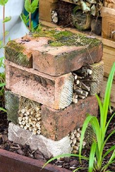Bug hotel made from bricks and bamboo - © Lee Avison/GAP Pho.- Bug hotel made from bricks and bamboo – © Lee Avison/GAP Photos Bug hotel. Inse… Bug hotel made from bricks and bamboo – © Lee Avison/GAP Photos Bug hotel. Insect home. Garden Crafts, Garden Projects, Garden Art, Diy Garden, Glow Garden, Bamboo Garden, Garden Drawing, Garden Fencing, Brick Projects