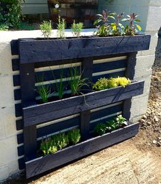 "71 Likes, 15 Comments - Jacqueline Vallance (@green_end_farm) on Instagram: ""My finished herb pallet planter! We have rosemary, sage, chives, marjoram, thyme and lavender mint.…"""