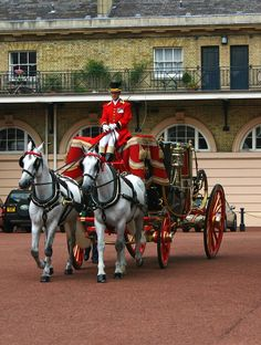 The Royal Mews at Buckingham Palace evolved from the King's Mews, an institution that goes as far back as the reign of Richard II's time until the reign of Henry VII, the Mews was at Charing Cross on the present site of the National Gallery. The royal hawks were kept her from 1377 and the name 'mews' derives from the word meaning 'mew' meaning moulting as the birds were confined there during moulting time.