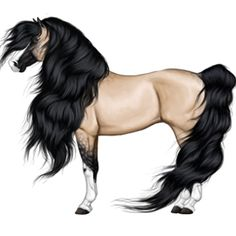 Soooo beautyfuullll Most Beautiful Animals, Beautiful Horses, Horse Drawings, Animal Drawings, Shiloh Dog, Cute Horse Pictures, Arte Equina, Horse Outline, Horse Animation