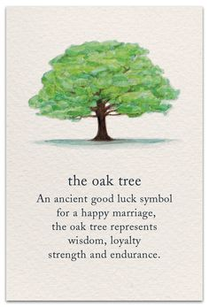 The Oak Tree Inside message: May your marriage grow as strong and beautiful as the mighty oak. Illustration Photo, Illustration Blume, Oak Tree Wedding, Wedding Card, Fall Wedding, Good Luck Symbols, Mighty Oaks, Flower Meanings, Plant Meanings