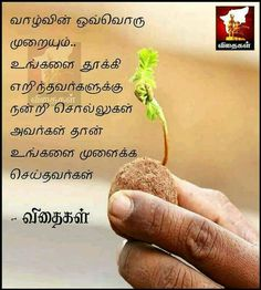 Mommy Quotes, Dad Quotes, Good Life Quotes, True Quotes, Wiser Quotes, Qoutes, Leader Quotes, Friendship Quotes In Tamil, Tamil Love Quotes