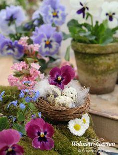 Aus einem Strohkranz, Moos, einem Deko-Nest, Federn, Stiefmütterchen, Gänseblümchen und anderen kleinblütigen Blumen wird im Handumdrehen eine frühlingshafte Dekoration (Foto: Susanne Grüters)