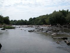 Over 1000 miles of river have been re-opened to migratory fish in Virginia in the past decade.