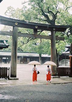 Meiji-Jingu Tokyo 明治神宮 東京 by porkchopsandy, via Flickr    fallegir litir