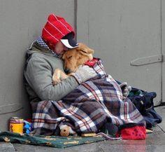 Et si c'était vous ? Un chien, un SDF, la rue ...