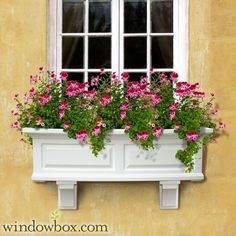 White window box with pink flowers, yellow stucco wall.