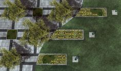 Landscape Architecture   #detail #landscapearchitecture #urban #plant #planviewgarden