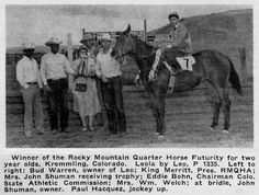 LEOLA American Quarter Horse, Quarter Horses, Running Horses, Two Year Olds, Thoroughbred, Rocky Mountains, Legends, Foundation, The Past
