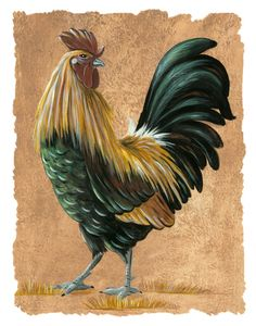Colorful Rooster with Turned Head kitchen by HamiltonArtandDesign