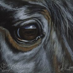Watchful  The Equine Art of Kim McElroy