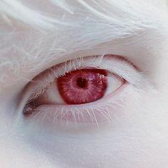 Character inspo – Beauty & Seem Beautiful Pretty Eyes, Cool Eyes, Beautiful Eyes, Aesthetic Eyes, White Aesthetic, Photo Reference, Art Reference, Foto Blog, Vampire