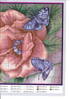 Rose and Butterflies   1 of 2