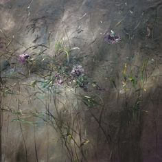 PAINTINGS   Claire BASLER