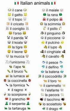 Animais em Italiano!! #aprender #italiano #learn #italian #animals #animais #pet #estudos #livro
