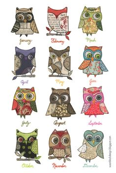 An owl for each month Owl Art, Bird Art, Susan Black, Owl Illustration, Art Illustrations, Paper Owls, Owl Pictures, Owl Always Love You, Beautiful Owl