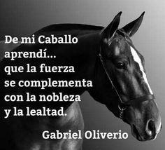 De mi caballo aprendí. ..