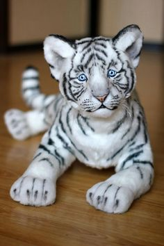 White tiger cub-57cm. Wild cat Wild animals OOAK Toys | Etsy White Tiger Cubs, Cute Fantasy Creatures, Lion Cub, Kitty, Cats, Stuffed Toy, Wild Animals, Masters, Craft