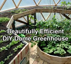 A Beautifully Efficient DIY Dome Greenhouse | Off Grid World Geodesic Dome Greenhouse, Greenhouse Ideas, Greenhouse Effect, Greenhouse Gardening, Greenhouse Cover, Underground Greenhouse, Indoor Aquaponics, Aquaponics System, What Is A Conservatory