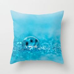 Fun turquoise pillow covers great for brightening up any drab decor! CrystalGaylePhoto, $30.00