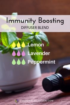 Essential Oils For Colds, Essential Oils Guide, Essential Oil Diffuser Blends, Young Living Essential Oils, Essential Oil Cold Remedy, Immunity Essential Oils, Essential Oils For Inflammation, Best Oil Diffuser, Chamomile Essential Oil