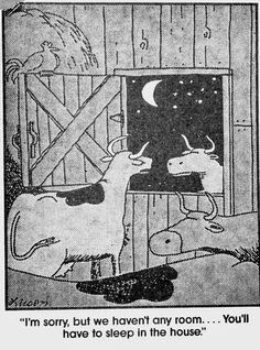 """The Far Side"" by Gary Larson. Far Side Cartoons, Far Side Comics, Funny Texts From Parents, Funny Jokes For Kids, Funny Laugh, Haha Funny, Funny Cows, Hilarious Stuff, Funny Shit"