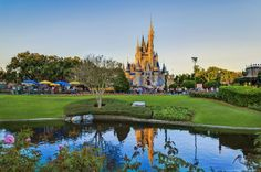 Walt-Disney World Resort Disney Orlando floride Florida USA universal ...