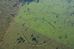Amazonia.A legend of the lost city. A group of researchers from the University of Pará announced the discovery of 16 other geoglyphs in the Amazon region.According to scientists, some of these geoglyphs may have more than 10,000 years and some of them even measuring hundreds of meters in diameter. It is suspected that these figures are meant to marking locations and also to carry out the rituals.