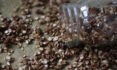 Rezepte für ein schnelles und gesundes Schoko-Knuspermüsli. Es enthält keinen Zucker, wird nur mit etwas Reissirup gesüßt und ist blitzschnell fertig.