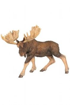 Papo Moose at theBIGzoo.com, a toy store with over 12,000 products.