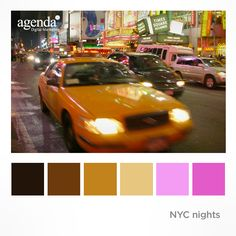 Colour Palette NYC Nights
