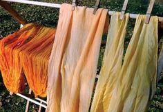 Learn to dye fabric and yarn with plants, herbs and other natural materials. These fabrics were naturally dyed with turmeric and tea bags.