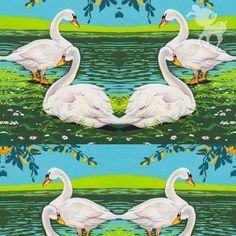 Summer swans jersey