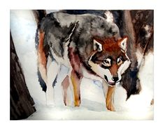 Watercolor Wolf 2292012 by *Arivina on deviantART