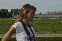 Photographing Iris germanica for Nursery Bouwmeester, Noordwijkerhout.