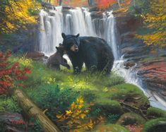 Fine Art Dealer and Distributor Wildlife Photography, Animal Photography, Waterfall Paintings, Black Bear, My Animal, Art Forms, Animal Kingdom, In This Moment, Fine Art