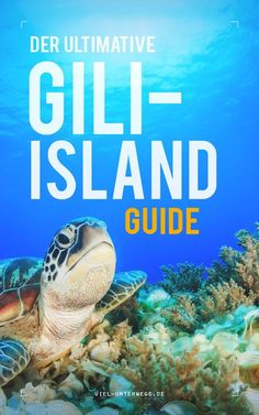 Gili Islands Guide – Insel Paradies Indonesiens? Meine Meinung &Tipps