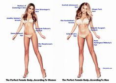 """What Does the """"Perfect Body"""" Look Like? Well you do not have to be a """"Supermodel"""" to fit the most selected image for the Female or Male.  Did Males and Female select the same body type for each other? You are just a click away from these answers. At Barbizon St. Louis Model and Talent, www.barbizonstl.com, we believe you have the Perfect Body when you are healthy, and you feel Confident."""
