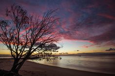 Magic beach sunset where nature reveals its beauty. Stradbroke Island, Amazing Sunsets, Sunset Beach, Sunset Photography, Continents, The Locals, South America, Beautiful Places, Stage