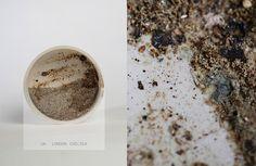 Lucie Libotte Dust Matters5