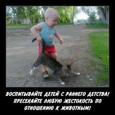 В несжатом качестве: https://cloud.mail.ru/public/8XmG/8drpV6gBB