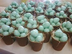 Spring favor or Easter gift.... little blue egg soaps in a peat pot. Cute!
