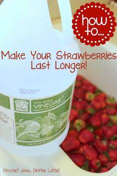 {Dessert Now, Dinner Later!} How To Make Your Strawberries Last Longer!  Works for all berries!
