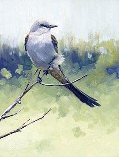 Scissor-tailed Flycatcher by Joe Garcia Oil ~ 8 x 6