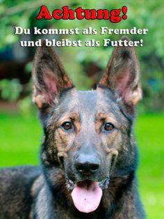 Warnschild-Schaeferhund-Metallschild-Aluschild-Dog