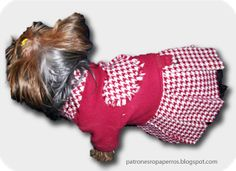 vestido verano perro